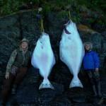 FISH0044